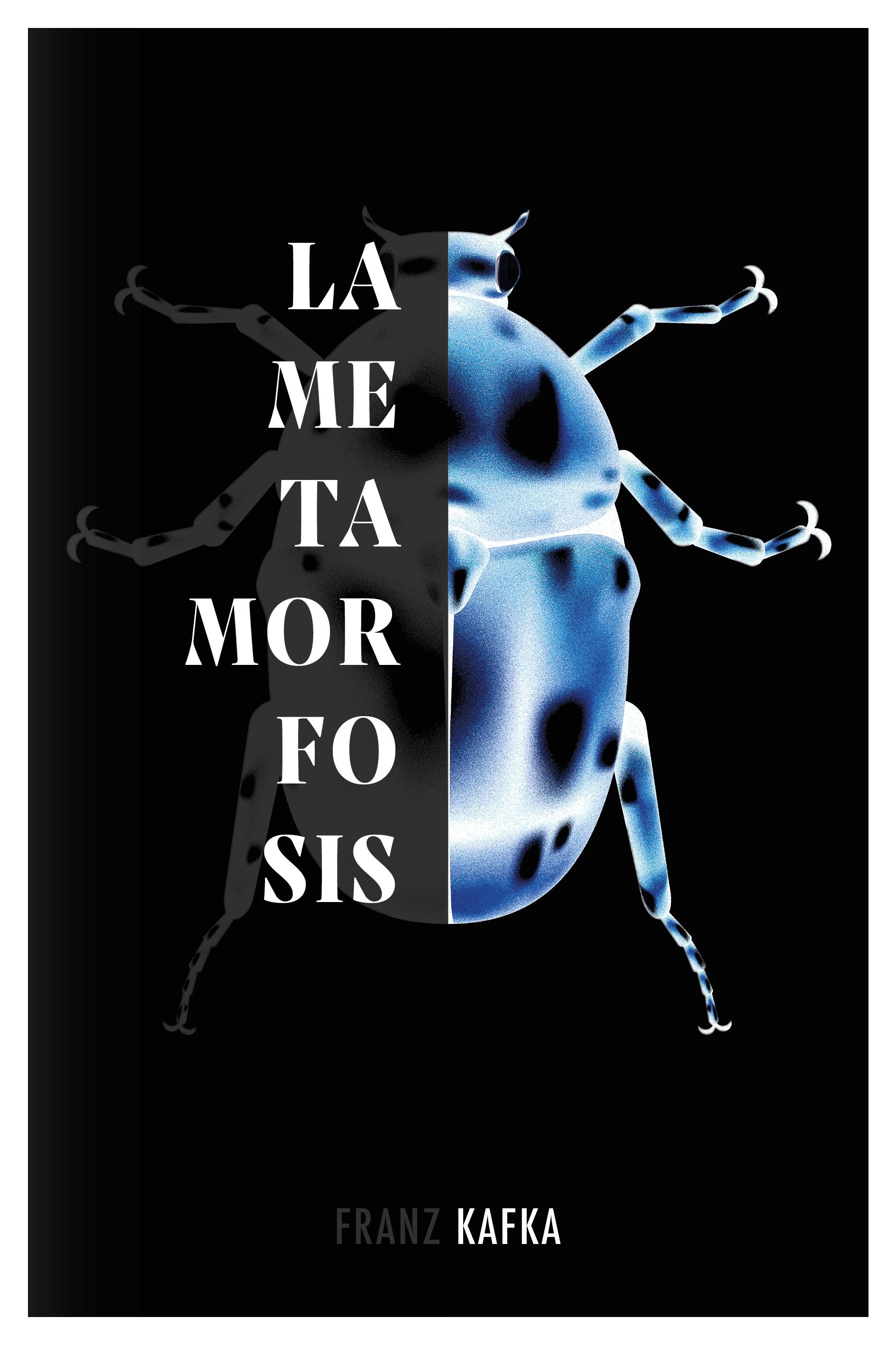 metamorfosis port-04
